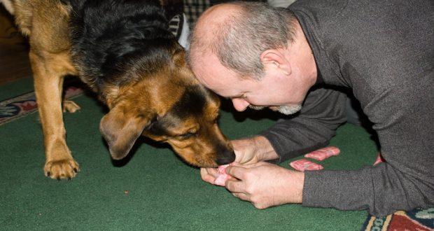 señor dándole de comer a su perro